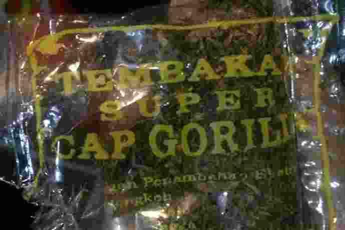 Tembakau Gorilla Siap Edar